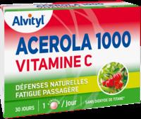 Govital Acerola 1000 à UGINE