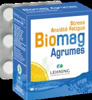Lehning Biomag Comprimés à Croquer Agrumes B/90 à UGINE