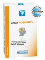 Ergyfosforyl Caps B/60 à UGINE