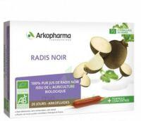 Arkofluide Bio Ultraextract Radis Noir Solution Buvable 20 Ampoules/10ml à UGINE