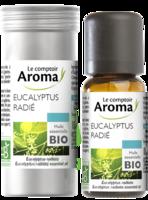 Huile Essentielle Bio Eucalyptus Radié à UGINE
