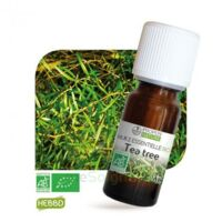 Huile Essentielle Tea Tree Bio 10ml à UGINE