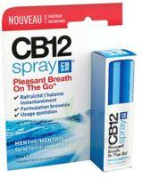CB 12 Spray haleine fraîche 15ml à UGINE