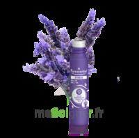 Puressentiel Sommeil Détente Roller stress 12 huiles essentielles 5ml à UGINE