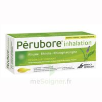 PERUBORE Caps inhalation par vapeur inhalation Plq/15 à UGINE