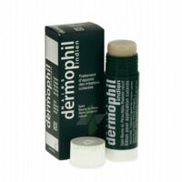 Dermophil Indien Pom Stick Girex/30g à UGINE