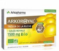 Arkoroyal Gelée royale bio 1500 mg Solution buvable 20 Ampoules/10ml à UGINE