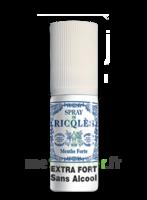 Ricqles Spray buccal sans alcool menthe 15ml à UGINE
