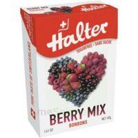 Halter Sans Sucre Bonbon Fruits Rouges 40g à UGINE