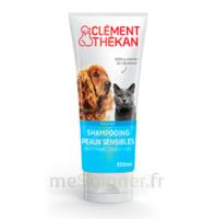 Clément Thékan Shampooing peaux sensibles T/200ml à UGINE