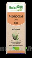 Herbalgem Memogem Solution Buvable Bio 30ml à UGINE