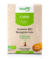 Herbalgem Gomme Cassis Bio B/24 à UGINE