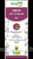 Herbalgem Sirop Bio Des Fumeurs 150ml à UGINE