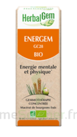 Herbalgem Energem Solution buvable bio Fl cpte-gttes/30ml à UGINE