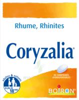 Boiron Coryzalia Comprimés Orodispersibles à UGINE