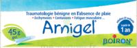 Boiron Arnigel Gel T/45g à UGINE